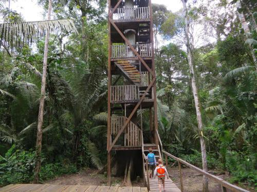 CUYABENO NATIONAL RESERVE [ECUADOR's AMAZON]: The highest canopy tower of Cuyabeno Reserve with view on the coranas of the trees.