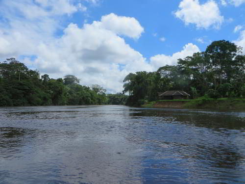 CUYABENO NATIONAL RESERVE [ECUADOR's AMAZON]: The mouth of the Cuyabeno River, frequently visited by dolphins.