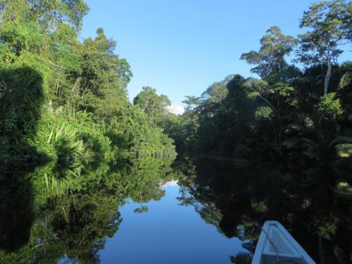CUYABENO NATIONAL RESERVE [ECUADOR's AMAZON]: The Z�balo River is one of the few black water rivers in the Ecuadorian Amazon.